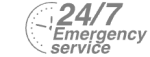 24/7 Emergency Service Pest Control in Broxbourne, EN10. Call Now! 020 8166 9746